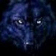 wolf825